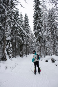 Esquiant / Esquiando